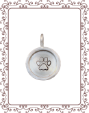 """disc 3-B: 5/8"""" silver disc with silver rim"""
