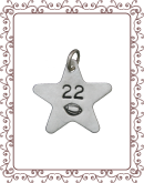 large charm charm 1-A:  large silver star