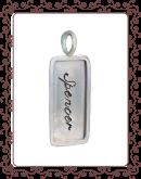 tag 2-B:  medium silver  tag with silver rim